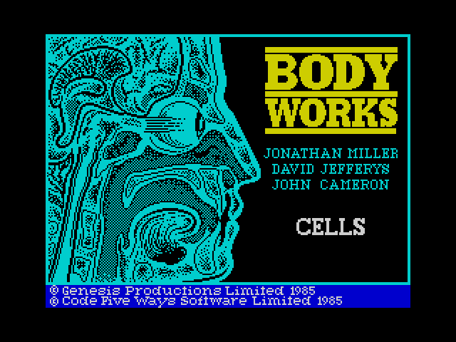 Body Works screenshot